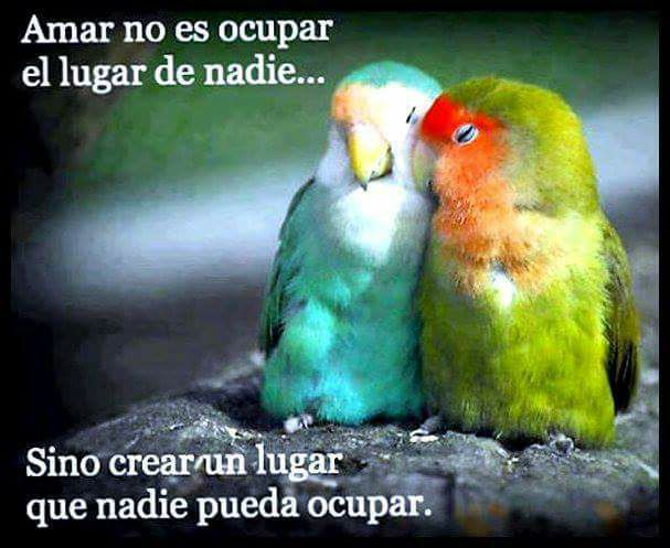 Amar no es ocupar el lugar de nadie