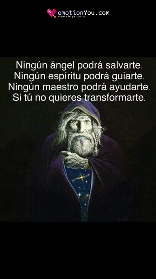 Ningún ángel