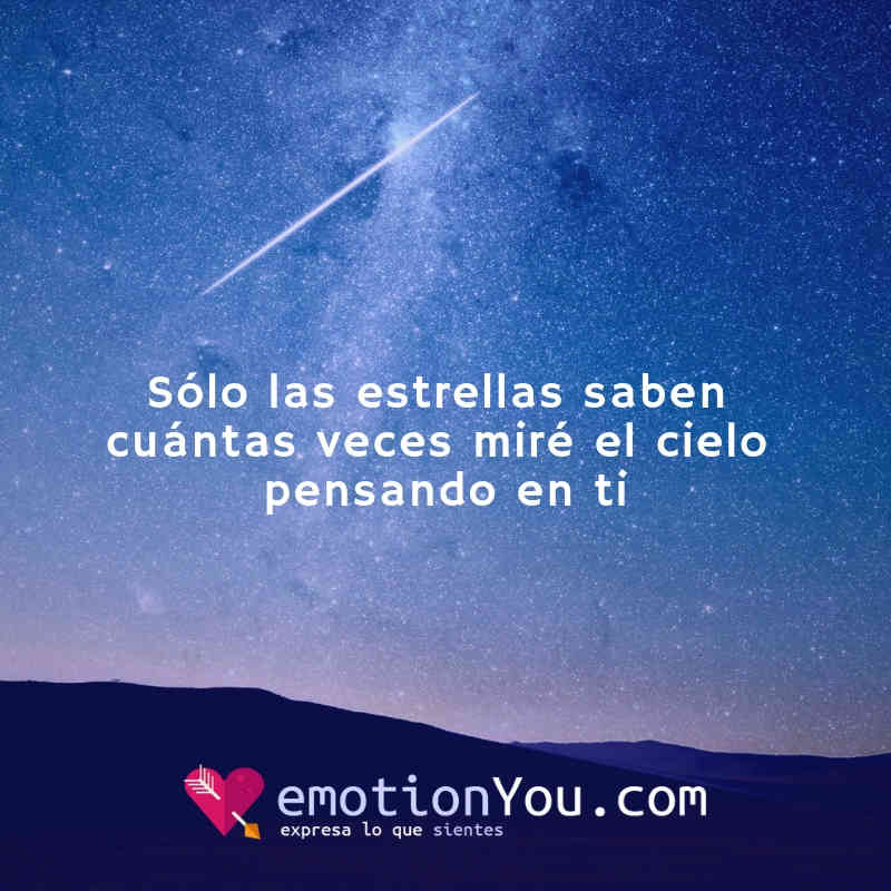 Sólo las estrellas